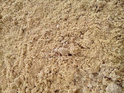 Бешпагирский песок